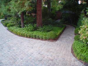 gardening-idea4