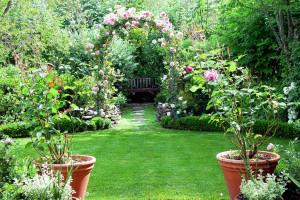gardening-idea8