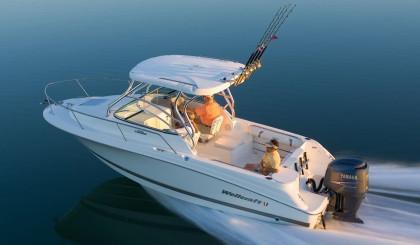 Cabin-Cruiser-Fishing-Boat