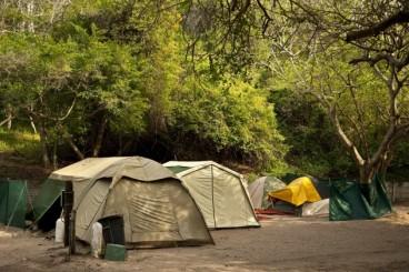 Cape-Vidal-campsite