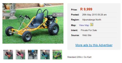 Standard-200-cc-go-kart