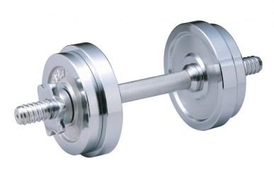 silver-dumbbell
