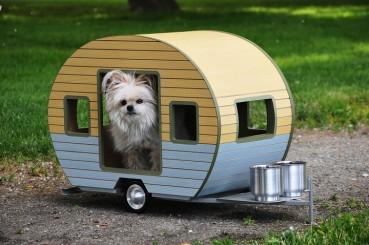 cool-dog-houses