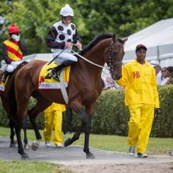 The-J&B-Met-2016-horse