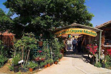 bryanston organic market in johannesburg
