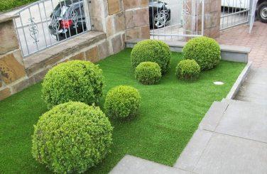 townhouse gardening