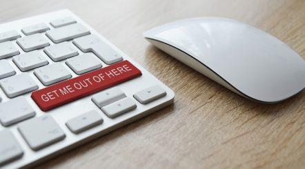 tips avoid scams online