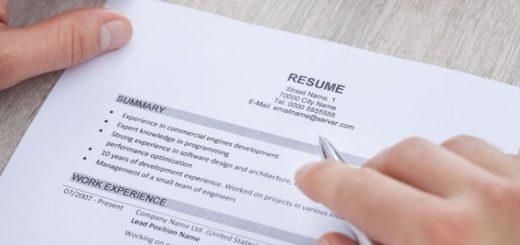 job seeker cv