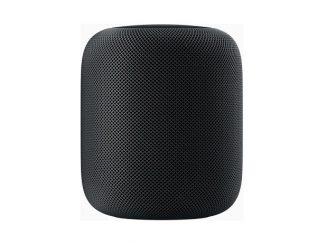 Apple Homepod Smart Speaker | Junk Mail